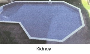 Kidney shaped pool